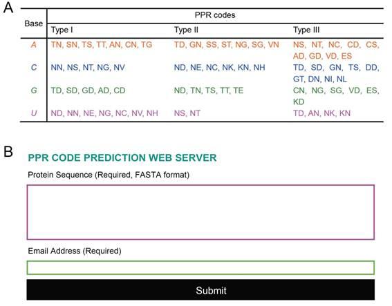 图示为PPR code选择性识别四种RNA碱基的对应关系以及PPR蛋白靶标预测的网站界面
